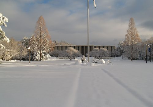 Campus on a snowy day.